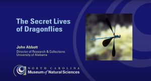 The Secret Lives of Dragonflies - Bugfest 2017 (September 19, 2017)