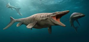 Mosasaurs, pterosaurs, and giant sea turtles dwelled in the ancient Mississippi Embayment ecosystem in what is now central Alabama. Photo by Stocktrek Images, Inc/Alamy Stock Photo